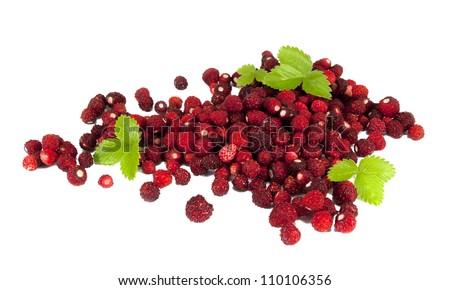 Delicious wild strawberries with green leaves , isolated on white