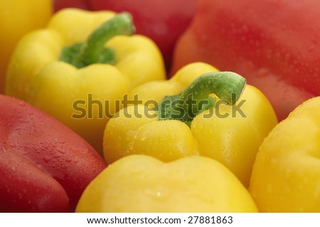 Delicious Yellow and red bell peppers with drops of water. - stock photo