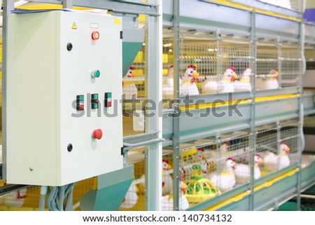 Demonstration of multilevel industrial incubator with soft toy chickens. - stock photo