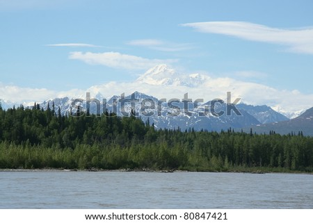 Denali in the summer - stock photo