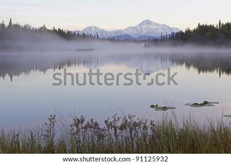 Denali Mountain Alaska - stock photo