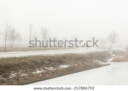 Dense fog in the Park with shrubs and trees of the February winter morning - stock photo