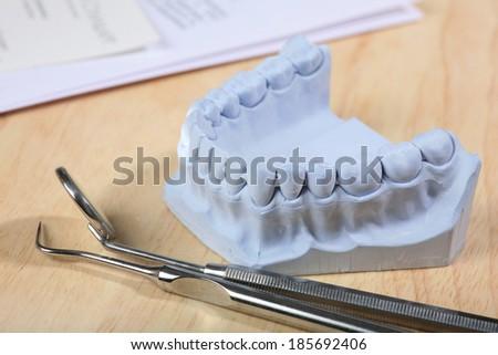 Dental casting gypsum model plaster cast stomatologic human and basic dentist tools - stock photo