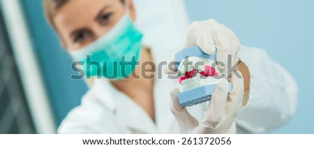 Dentist showing gypsum human jaw. Shallow depth of field. - stock photo