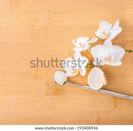 Dentistry Concept  with white orchid, shell and dental tools - stock photo