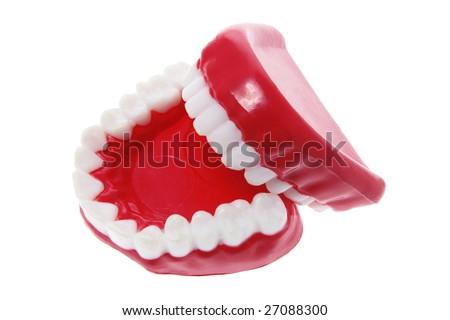 Dentures on Isolated White Background - stock photo