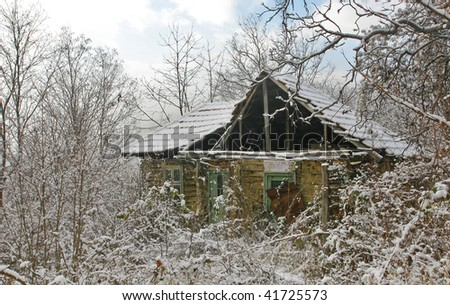Derelict house in the thistle bush - stock photo