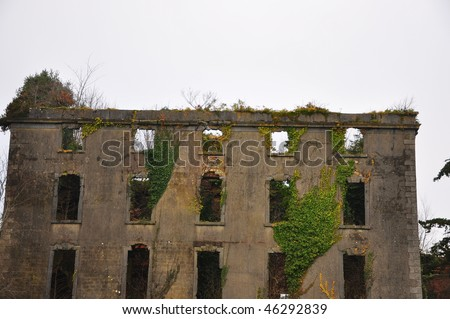 Derelict House with wild english ivy - stock photo