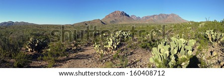 Desert and mountains in Big Bend National Park, Texas - stock photo
