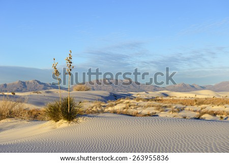Desert at White Sands and San Andres Mountains - stock photo