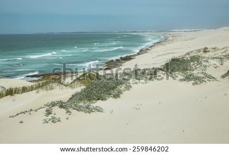 Desert dunes in De hoop nature reserve, South Africa - stock photo
