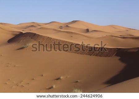 desert erg chebbi morocco desert  - stock photo