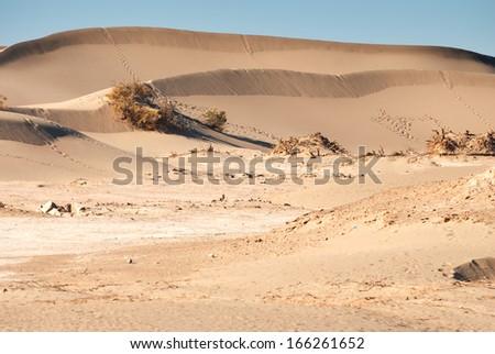 desert in Inner Mongolia, China - stock photo