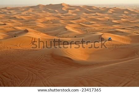Desert in the United Arabian Emirates - stock photo