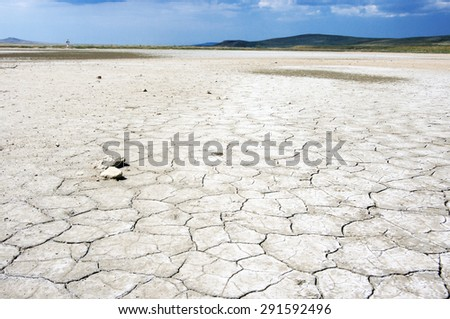 Desert land with dry and cracked ground. Low view point, shallow DOF. - stock photo