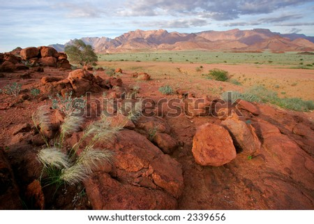Desert landscape at sunrise, Brandberg mountain, Namibia - stock photo