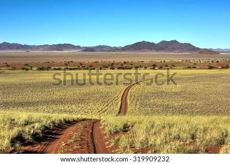 Desert landscape in the NamibRand Nature Reserve in Namibia. - stock photo