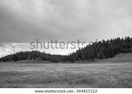 Desert landscape in Utah. - stock photo