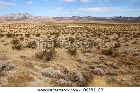 Desert landscape (Mojave desert) - stock photo