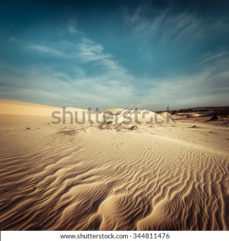 Desert landscape with dead plants in sand dunes under sunny sky. Global warming concept. Nature background