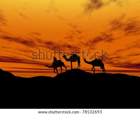 Desert landscape with walking camels at sunset - stock photo