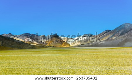 Desert plateau of the Altiplano (an ancient collapsed volcano) - Bolivia, South America - stock photo