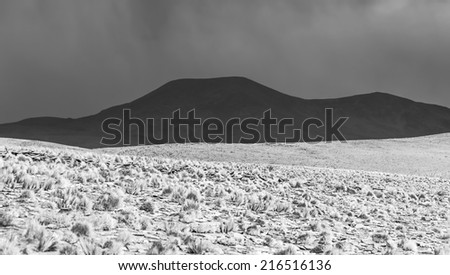 Desert plateau of the Altiplano, Bolivia (black and white) - stock photo