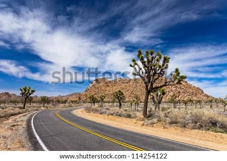 Desert road in Joshua Tree National Park, California. - stock photo