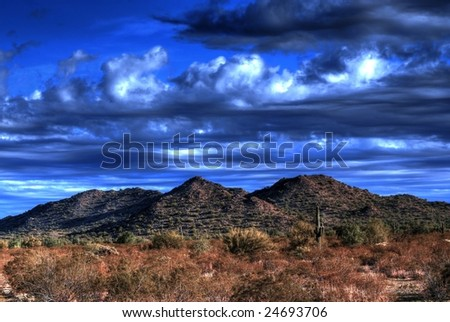 Desert saguaros and cactus in Arizona mountains - stock photo