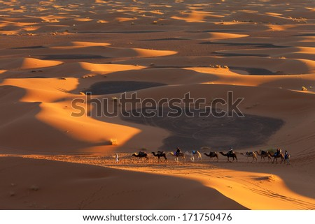 Desert Sahara, Camel Ride Caravan, Enjoying and happy People - stock photo