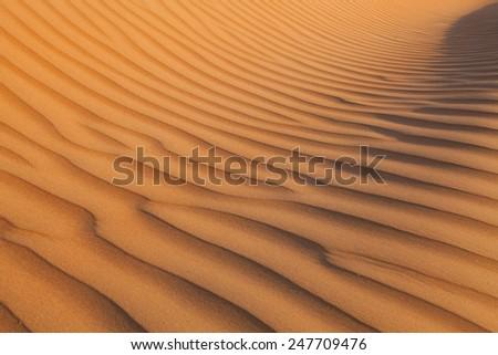 Desert Sand Dune Detail 1 - stock photo