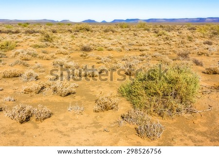 Desert type landscape on the road between Kliprand and Nieuwoudtville, Northern Cape in South Africa