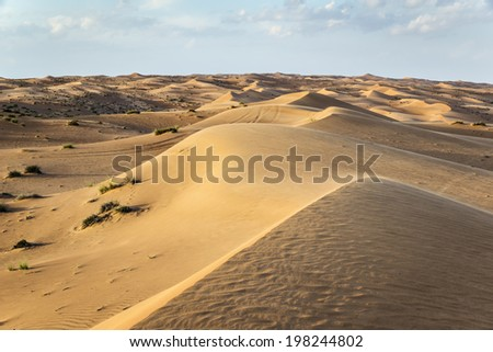 Desert Wahiba in Oman with green bushes and clouds on blue sky