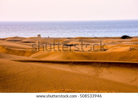 Desert with sand dunes in Maspalomas Gran Canaria Spain