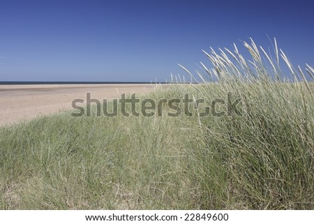 deserted beach - stock photo