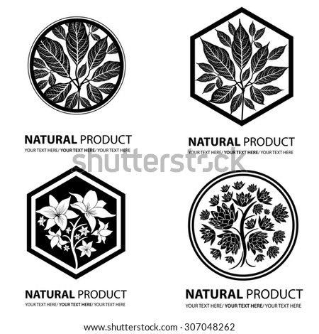 Design elements for organic natural logos - stock photo