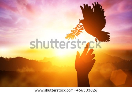 desire for peace concept with Silhouette of one hand desire to Dove carrying olive leaf branch .Freedom concept and World Peace Day hand helping ,international day of peace 2016