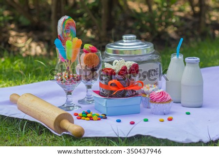 Dessert candy chocolate and cookie on the grass. - stock photo