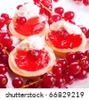 Dessert from cream and a currant red ripe and sour on white vanilla sauce in small baskets from a white flour in a surrounding of ripe berries of a currant isolated on a white background - stock photo