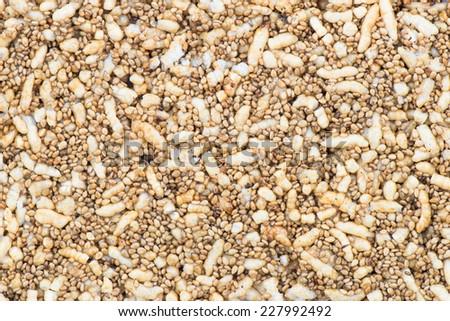 Dessert Poppy seeds background - stock photo