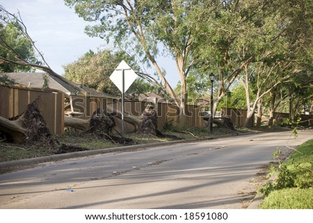 Destruction in a neighborhood, by trees uprooted and toppled during a hurricane. - stock photo