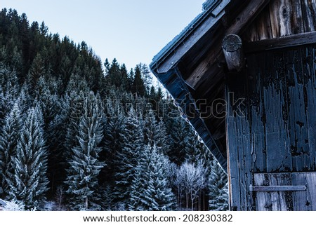 detail of a remote and isolated frozen cabin in the woods during winter - stock photo