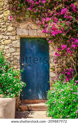 Detail of colorful entrance door in brick wall surrounded by flowers - stock photo