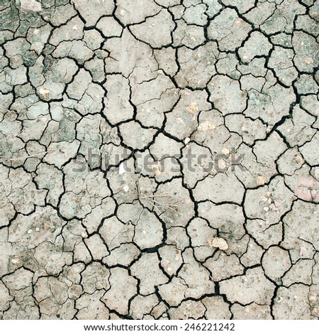 Detail of cracked earth - stock photo