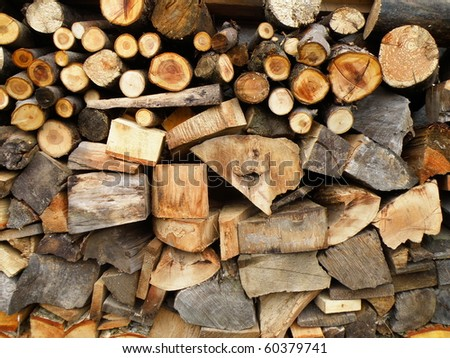 detail of fire-wood in summer time - stock photo