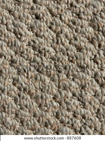 Detail Of Interior Neutral Colored Berber Carpet Good For Background Or Texture