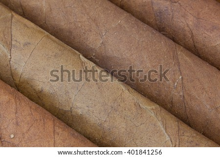 Detail of luxury Cuban cigars in the open box