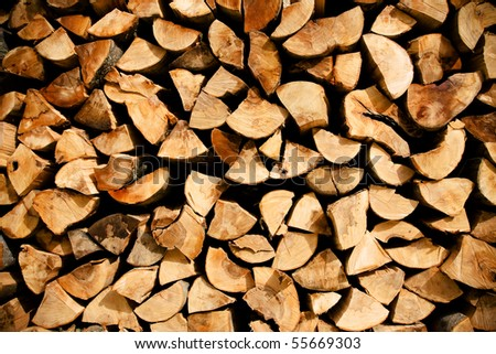 Detail of many cutted trees used in wood industry. - stock photo