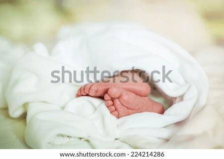 Detail of newborn baby girls feet sleeping - stock photo