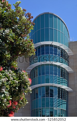 Detail of The New Zealand Te Papa Tongarewa Museum building in Wellington. In the foreground is New Zealand's national flower, Pohutukawa in early spring bloom.